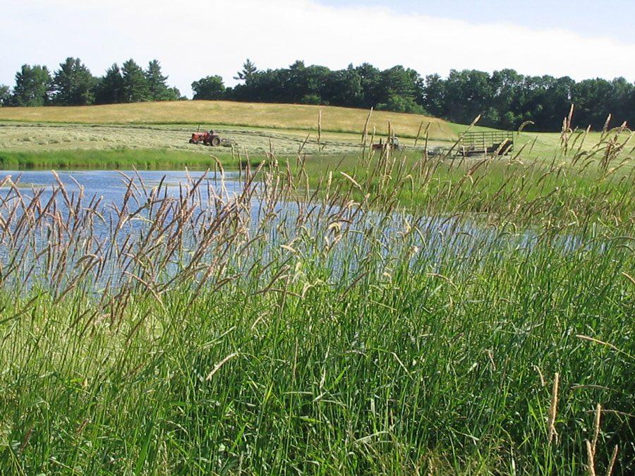 Tibbetts Field | Madbury, NH